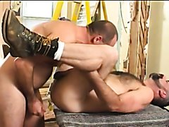 Sexy bears licking boots