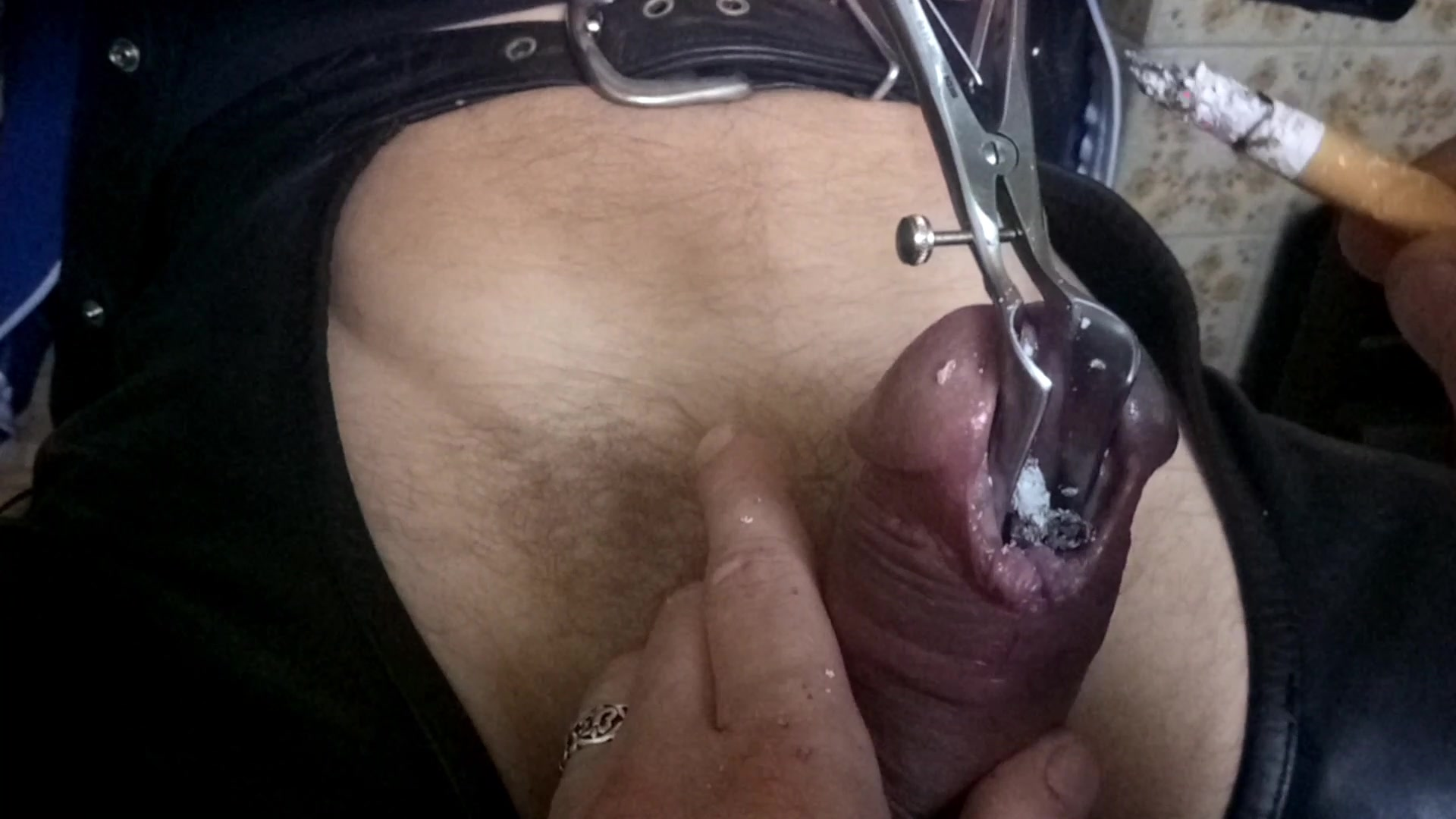 Excellent porn Shemale sucking own dick off