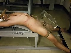 Asian - video 19