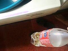 Bottle piss - video 5