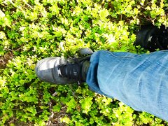 Nike AF1 crushes some plants