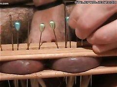 Cock and ball torture needles / Tortura de bolas y verga agujas