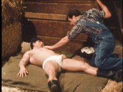 VINTAGE - HAYFEVER (1983)