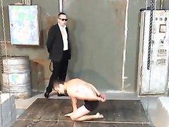 Slave training - video 14