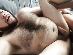 Bear and anal pain