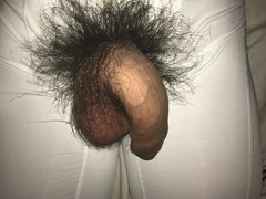 My hairy uncut cock