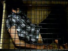 Tied in a cage