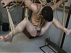 Asian Bitch Tied, Whipped, And Fucked