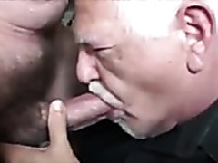 Hungry daddy suck a dick like crazy