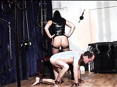 Mistress forced pig slave eat shit