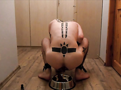 Hot Tatted Slave poops in a dog bowl n eats his shit